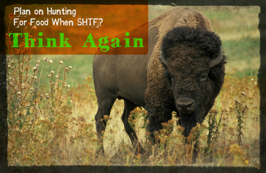 Hunting For Food When SHTF