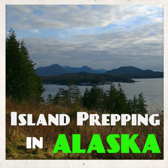Island prepping in alaska tinhatranch for How to get a homestead in alaska