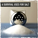 6 survival uses for salt