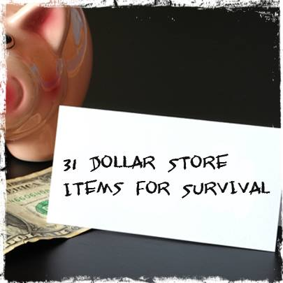 31 Dollar Store Items
