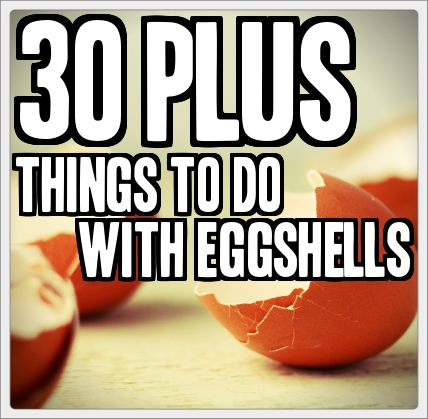 chicken and eggshell sidewalk chalk