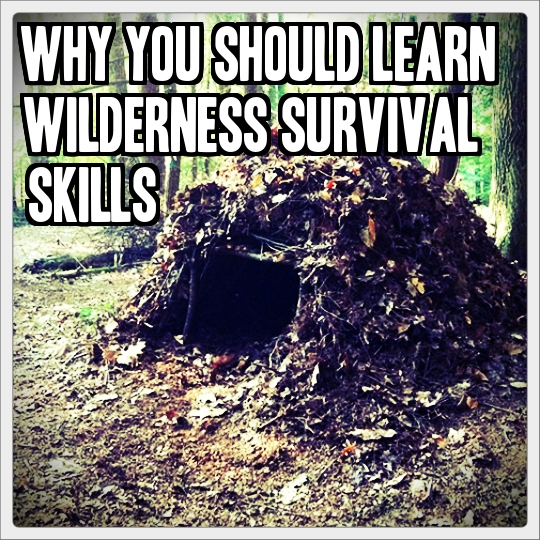 Desert Survival Skills: Why You Should Learn Wilderness Survival Skills » TinHatRanch