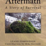 Aftermath_Cover_for_Kindle-1-e1418064151593