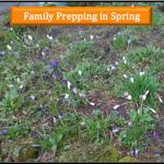 Prep Spring