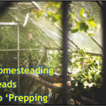 Homesteading-Leads-to-Prepping