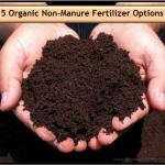 Non_Manure_Fertilizer