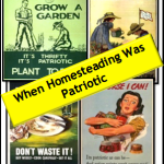 When-Homesteading-Was-Patriotic